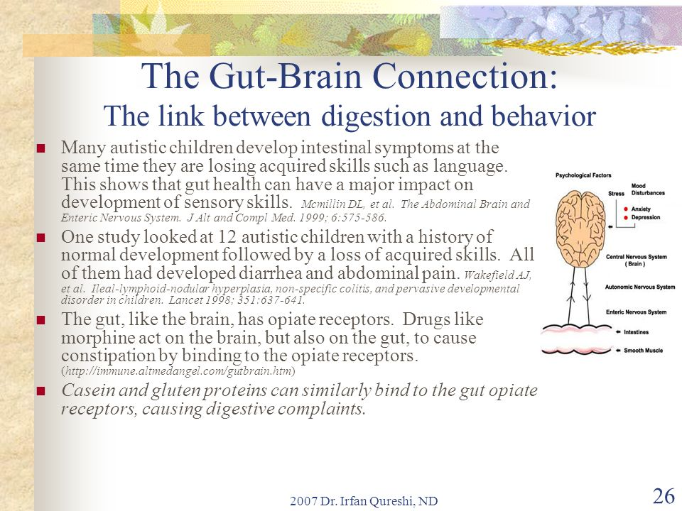 The Gut-Brain Connection: The link between digestion and behavior