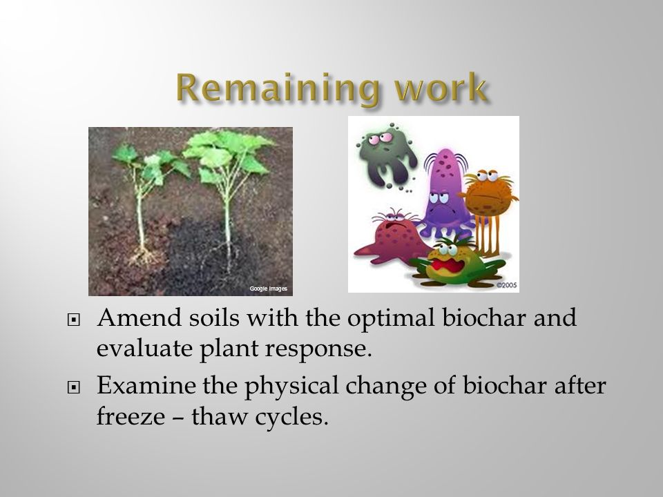 Remaining work Google images. Amend soils with the optimal biochar and evaluate plant response.