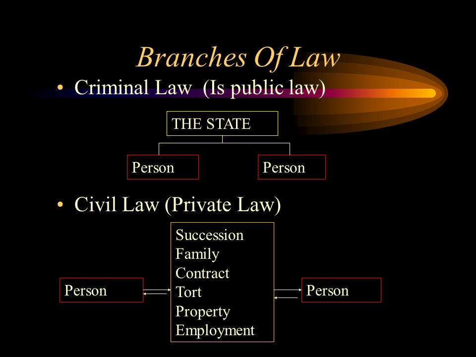 Branches Of Law Criminal Law (Is public law) Civil Law (Private Law)