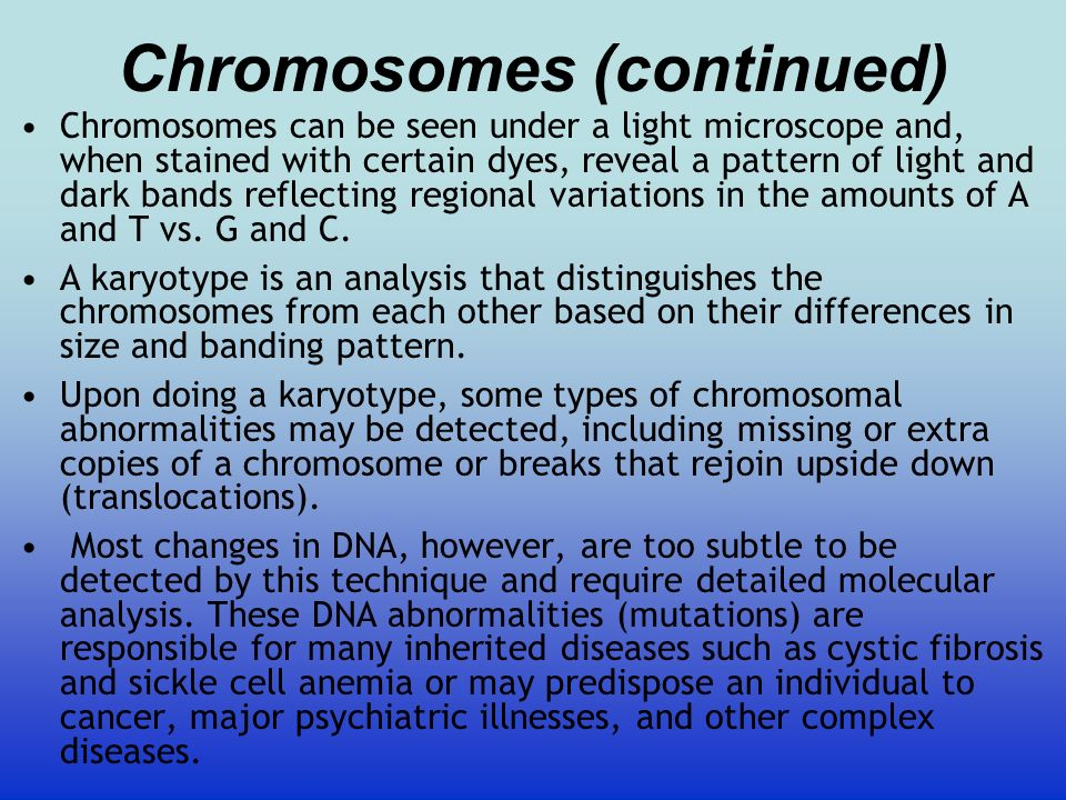 Chromosomes (continued)