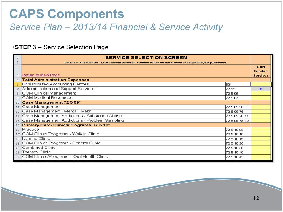 CAPS Components Service Plan – 2013/14 Financial & Service Activity