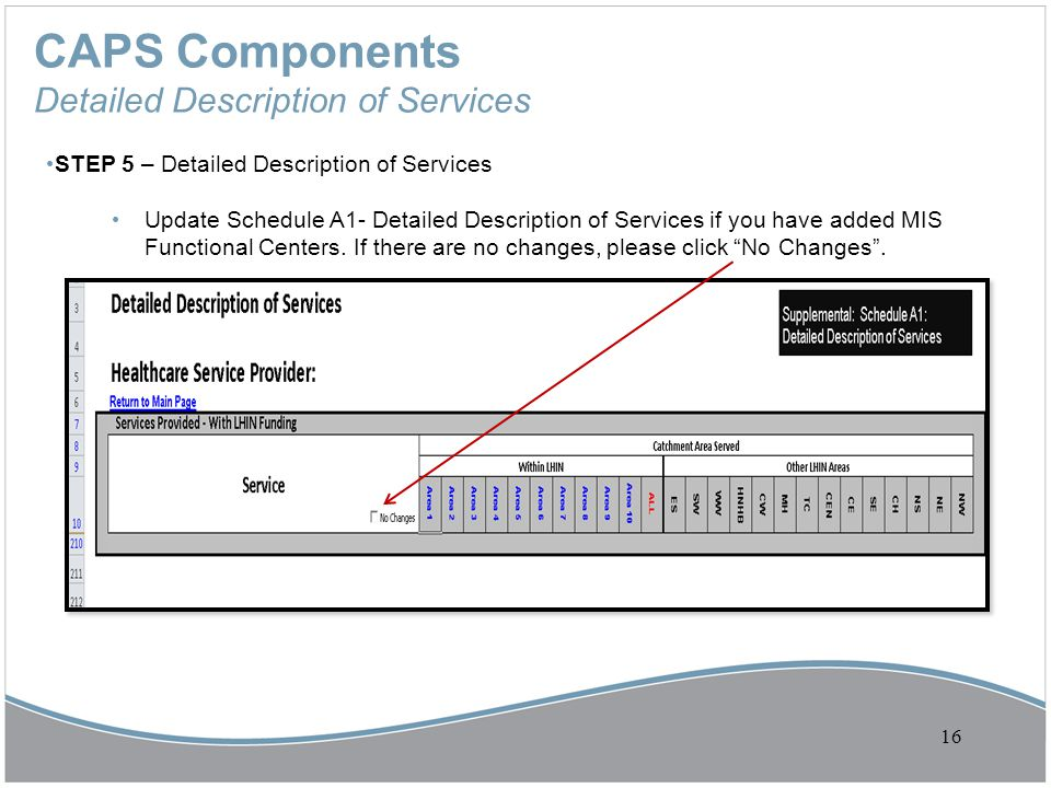 CAPS Components Detailed Description of Services