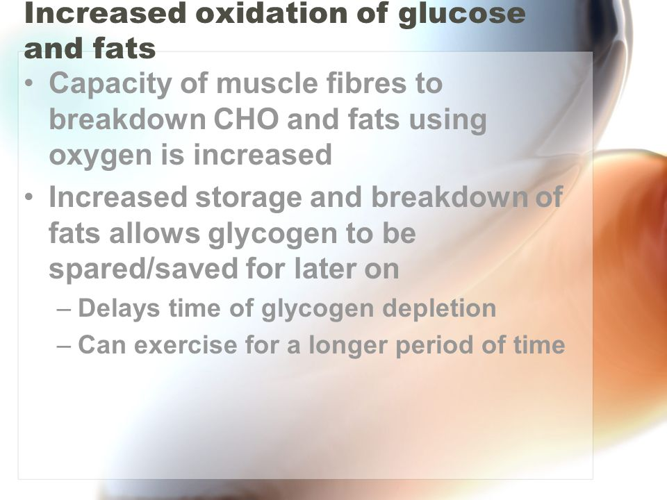 Increased oxidation of glucose and fats