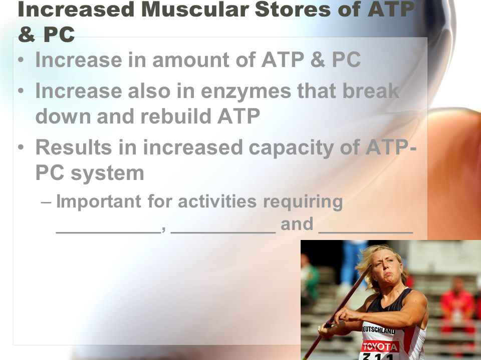 Increased Muscular Stores of ATP & PC