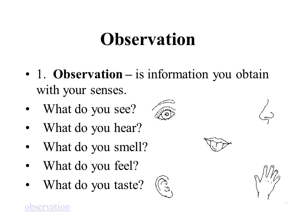 Observation 1. Observation – is information you obtain with your senses. What do you see What do you hear