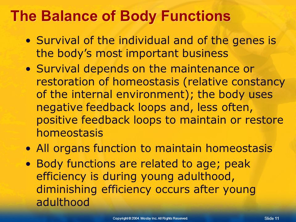 The Balance of Body Functions