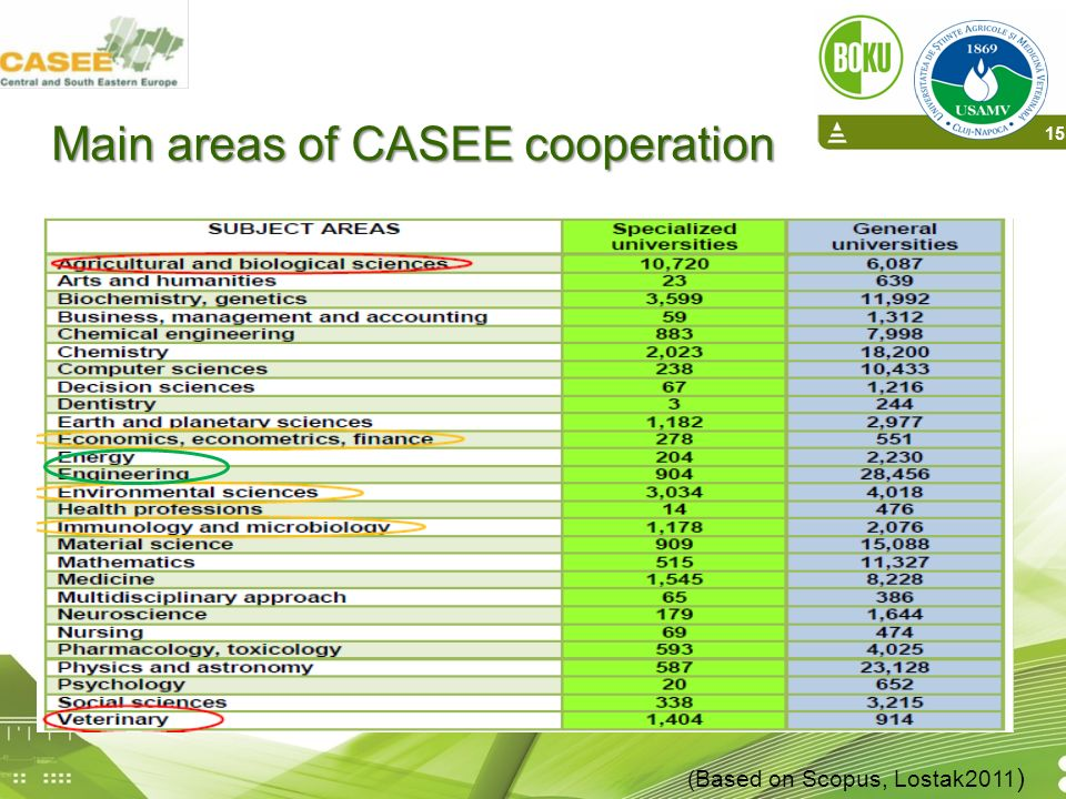 Main areas of CASEE cooperation