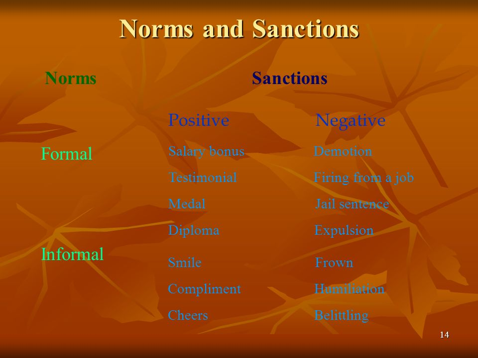 Norms and Sanctions Norms Sanctions Formal Informal Positive Negative