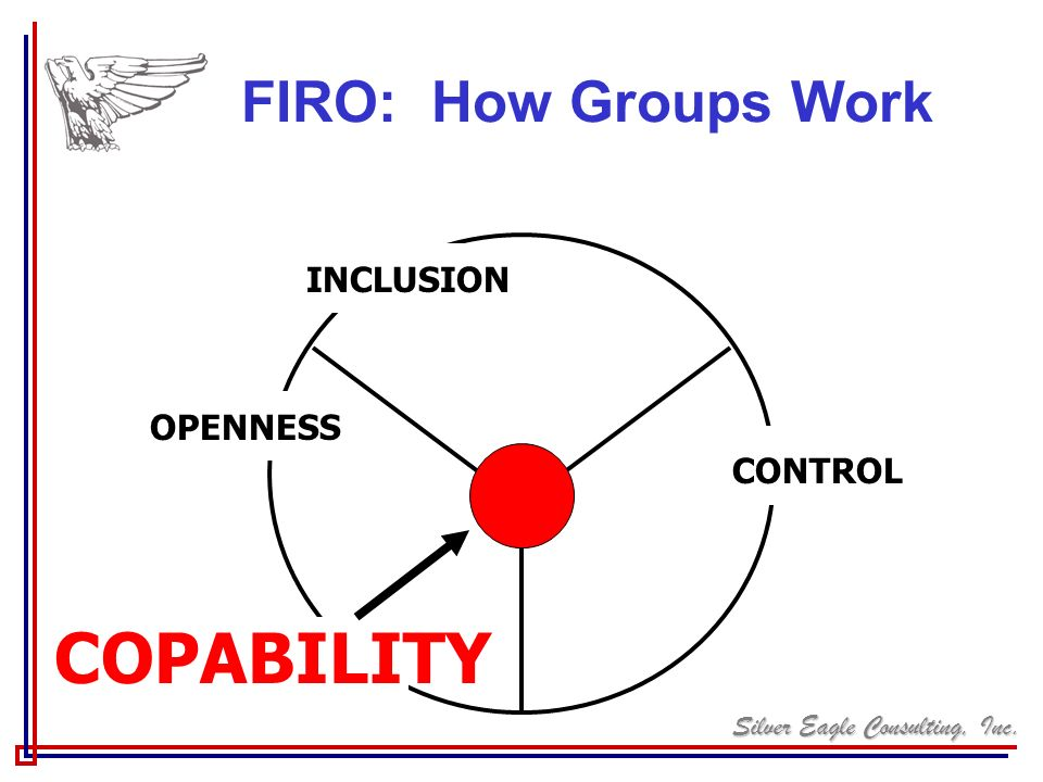 FIRO: How Groups Work INCLUSION OPENNESS CONTROL COPABILITY