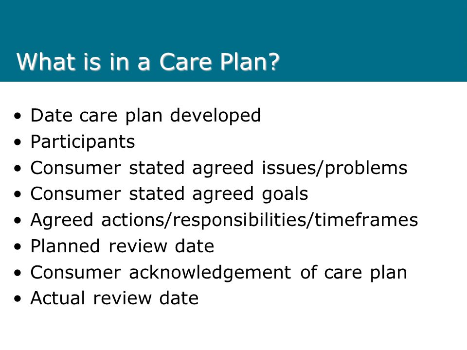 What is in a Care Plan Date care plan developed Participants