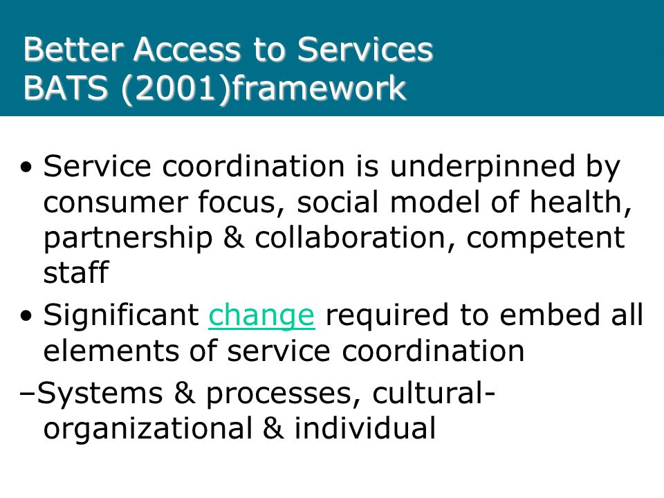 Better Access to Services BATS (2001)framework