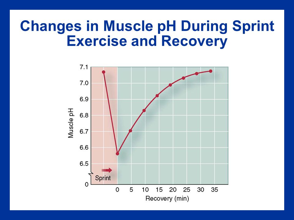 Changes in Muscle pH During Sprint Exercise and Recovery