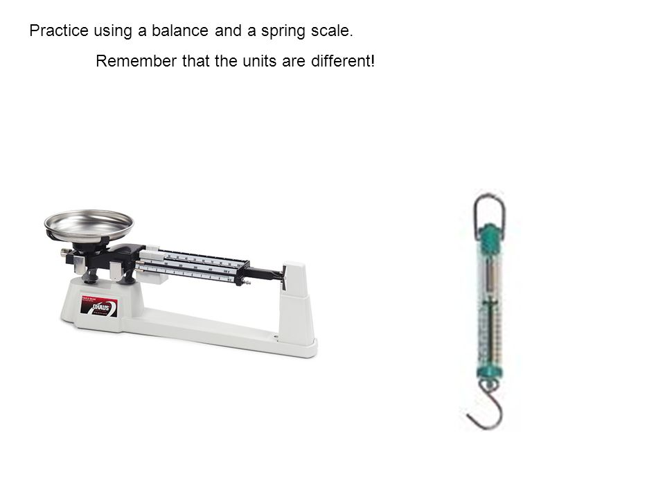 Practice using a balance and a spring scale.