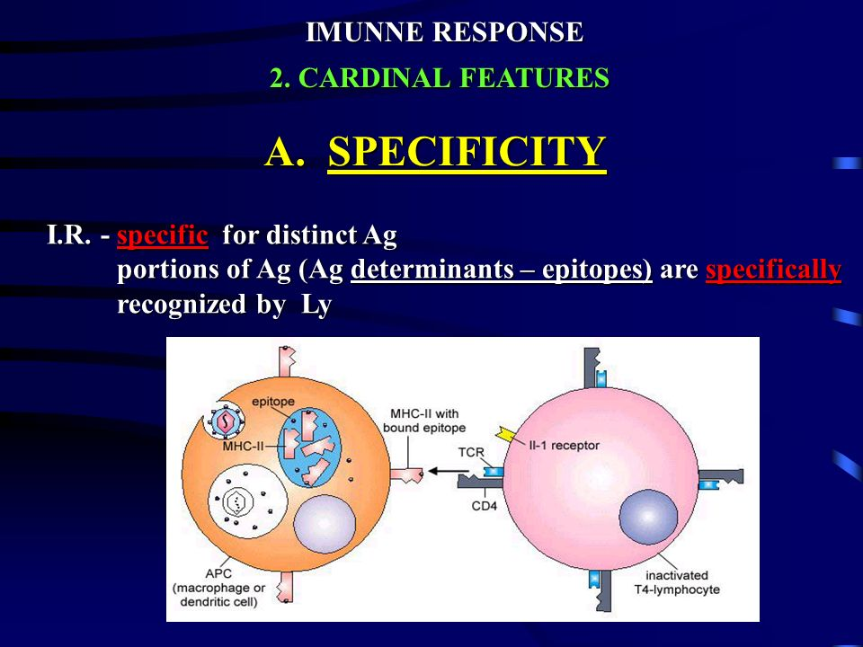 A. SPECIFICITY IMUNNE RESPONSE 2. CARDINAL FEATURES