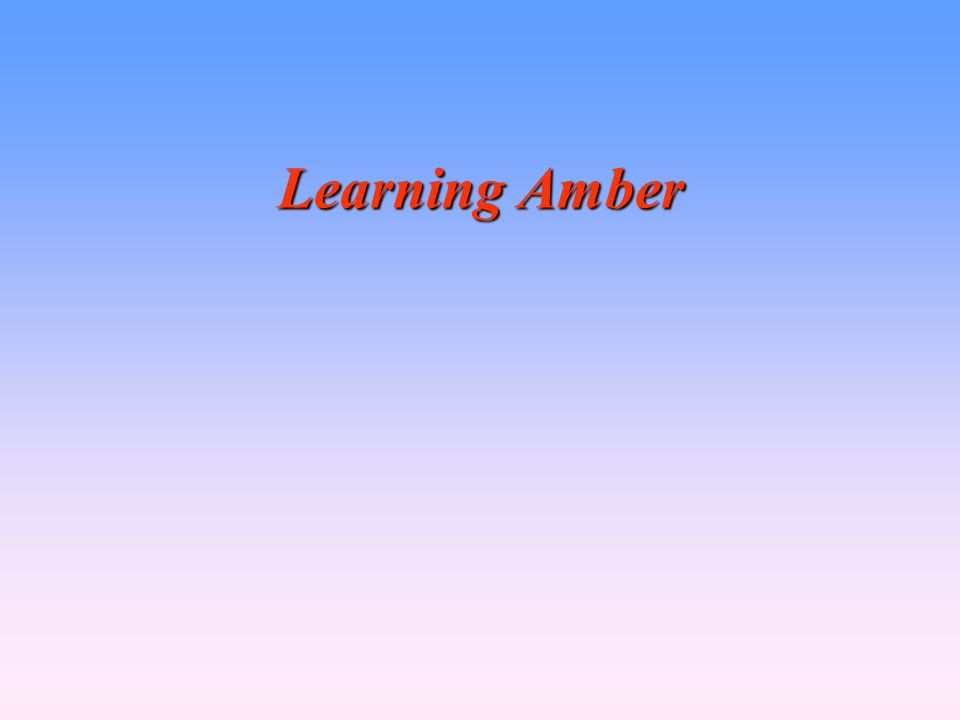 Learning Amber