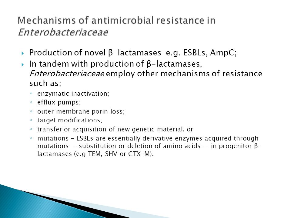 Mechanisms of antimicrobial resistance in Enterobacteriaceae