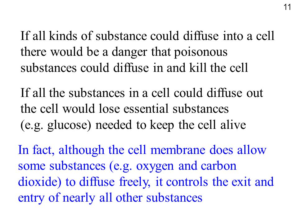 If all kinds of substance could diffuse into a cell