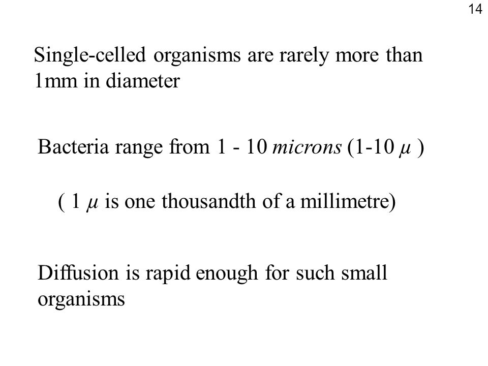 Single-celled organisms are rarely more than 1mm in diameter