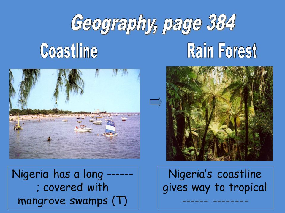 Geography, page 384 Coastline Rain Forest