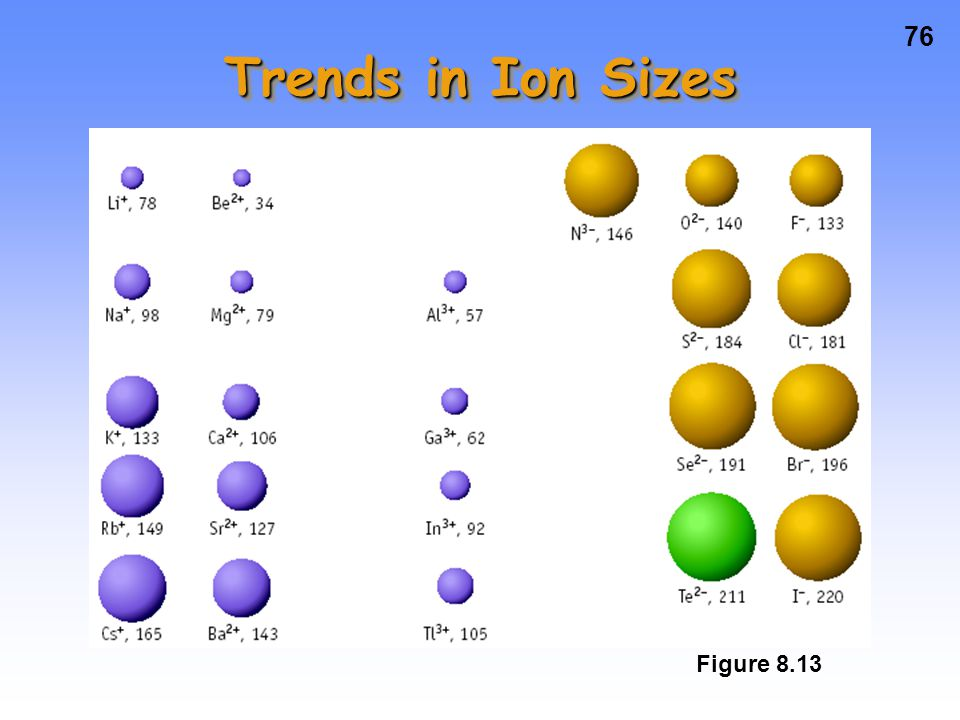Trends in Ion Sizes Figure 8.13