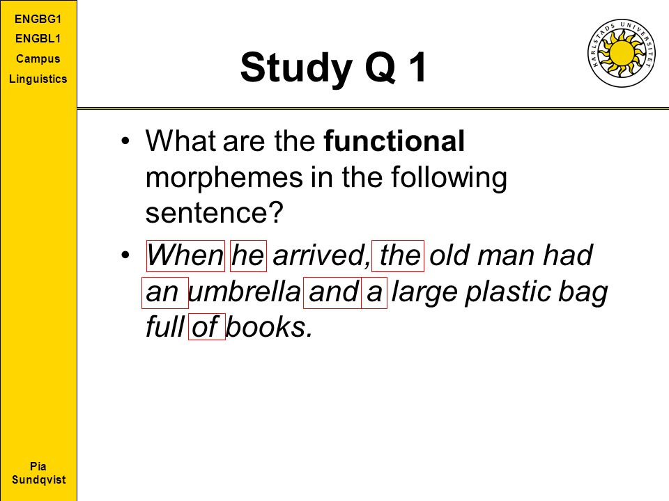 Study Q 1 What are the functional morphemes in the following sentence