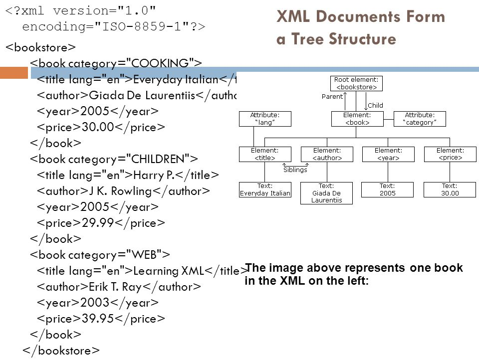 XML Documents Form a Tree Structure