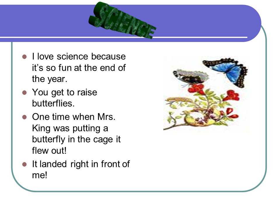 Mrs Parrington Loves Science: What I Like Best About Second Grade. By Kailea Fairbanks