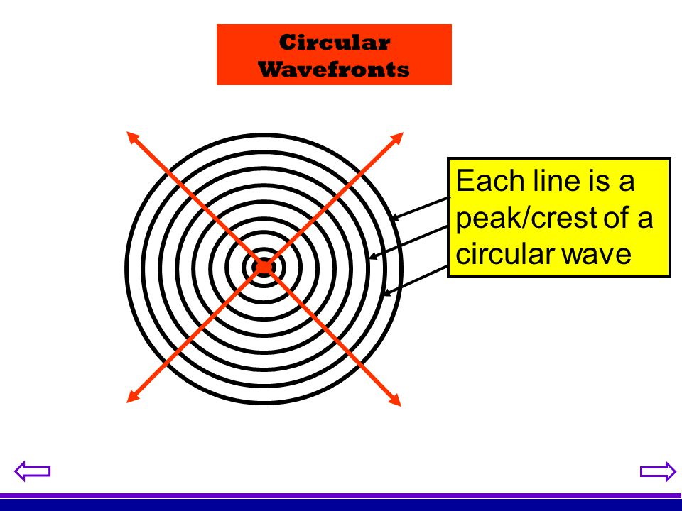 Each line is a peak/crest of a circular wave