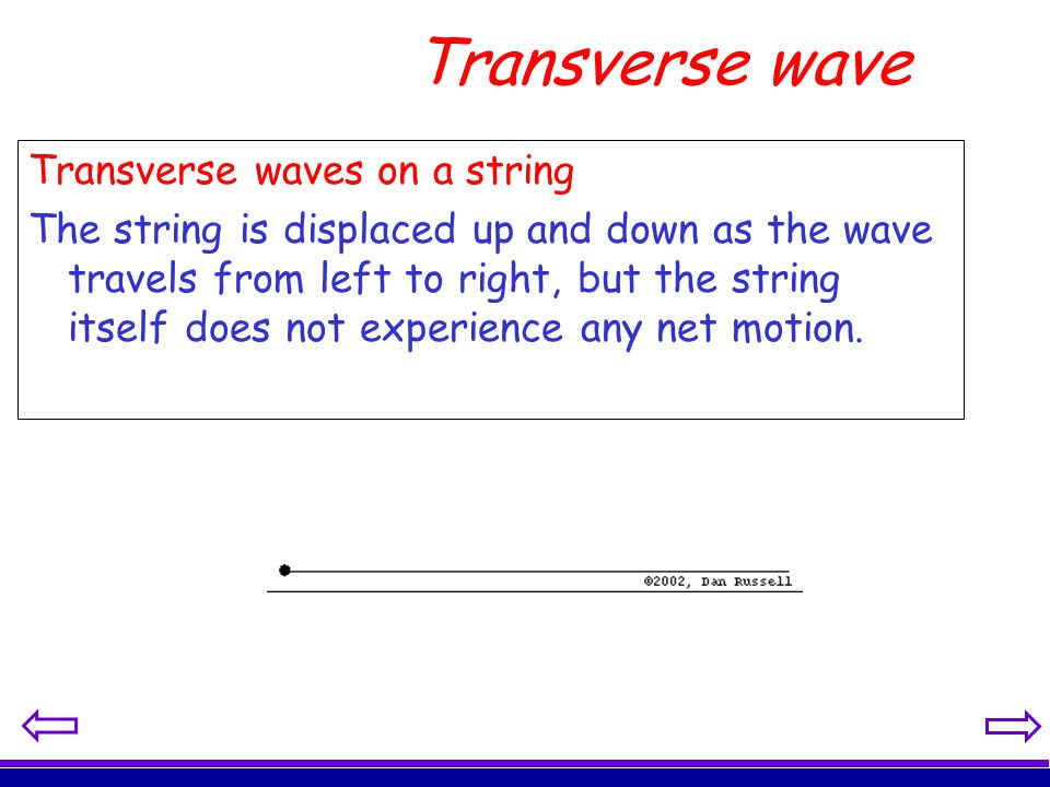 Transverse wave Transverse waves on a string