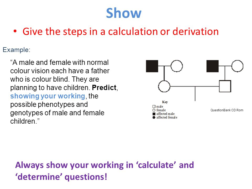Show Give the steps in a calculation or derivation