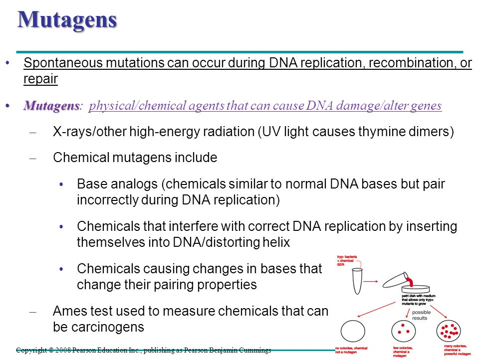 Mutagens Spontaneous mutations can occur during DNA replication, recombination, or repair.