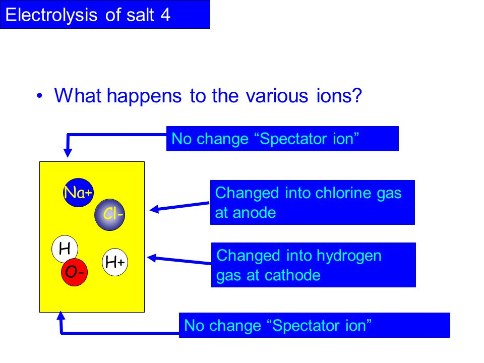 What happens to the various ions