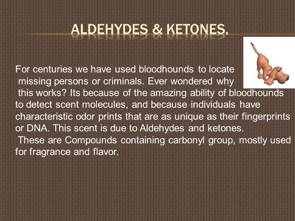 aldehydes & ketones. For centuries we have used bloodhounds to locate