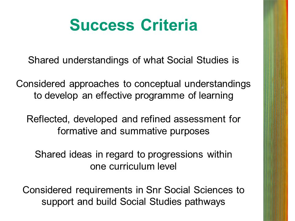 Success Criteria Shared understandings of what Social Studies is Considered approaches to conceptual understandings to develop an effective programme of learning Reflected, developed and refined assessment for formative and summative purposes Shared ideas in regard to progressions within one curriculum level Considered requirements in Snr Social Sciences to support and build Social Studies pathways