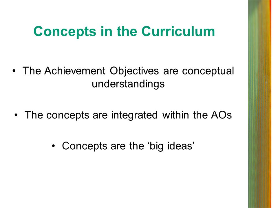 Concepts in the Curriculum