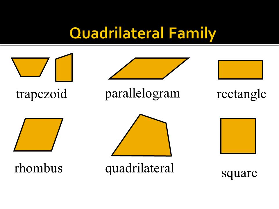 Quadrilateral Family trapezoid parallelogram rectangle rhombus