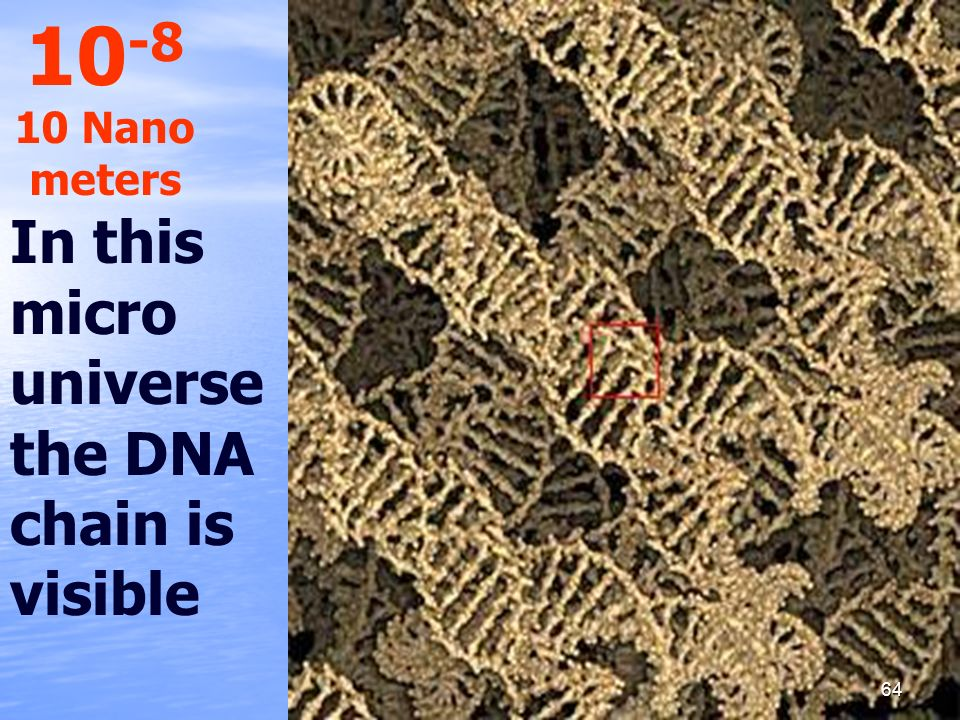 10-8 10 Nano meters In this micro universe the DNA chain is visible