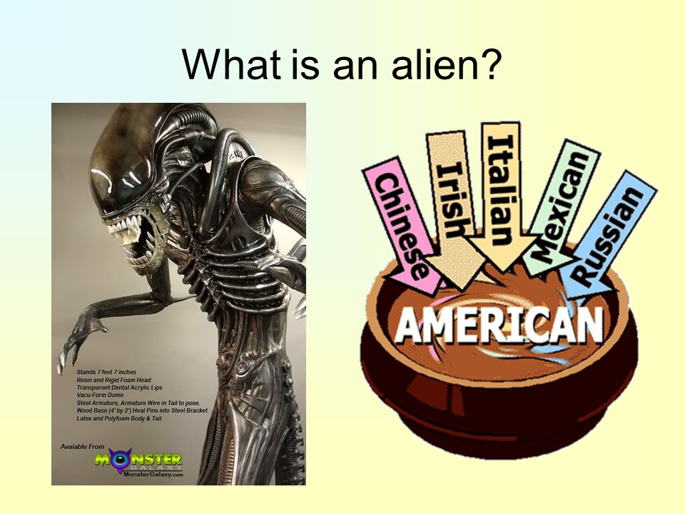 What is an alien