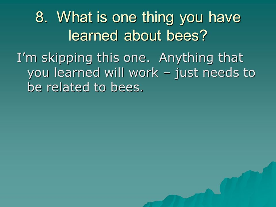 8. What is one thing you have learned about bees