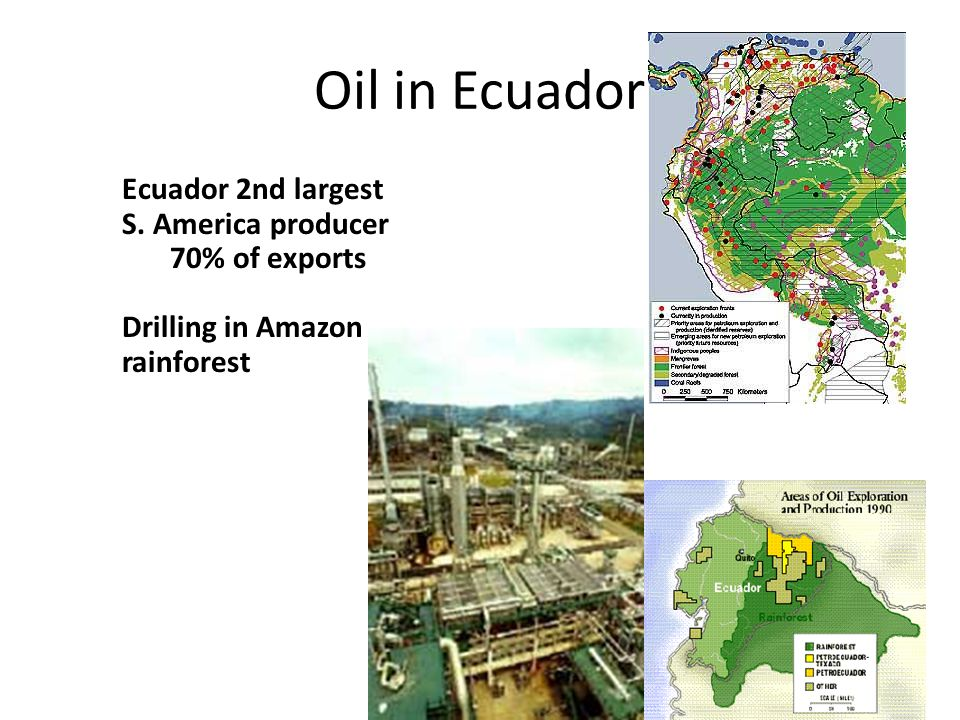 Oil in Ecuador Ecuador 2nd largest S. America producer 70% of exports