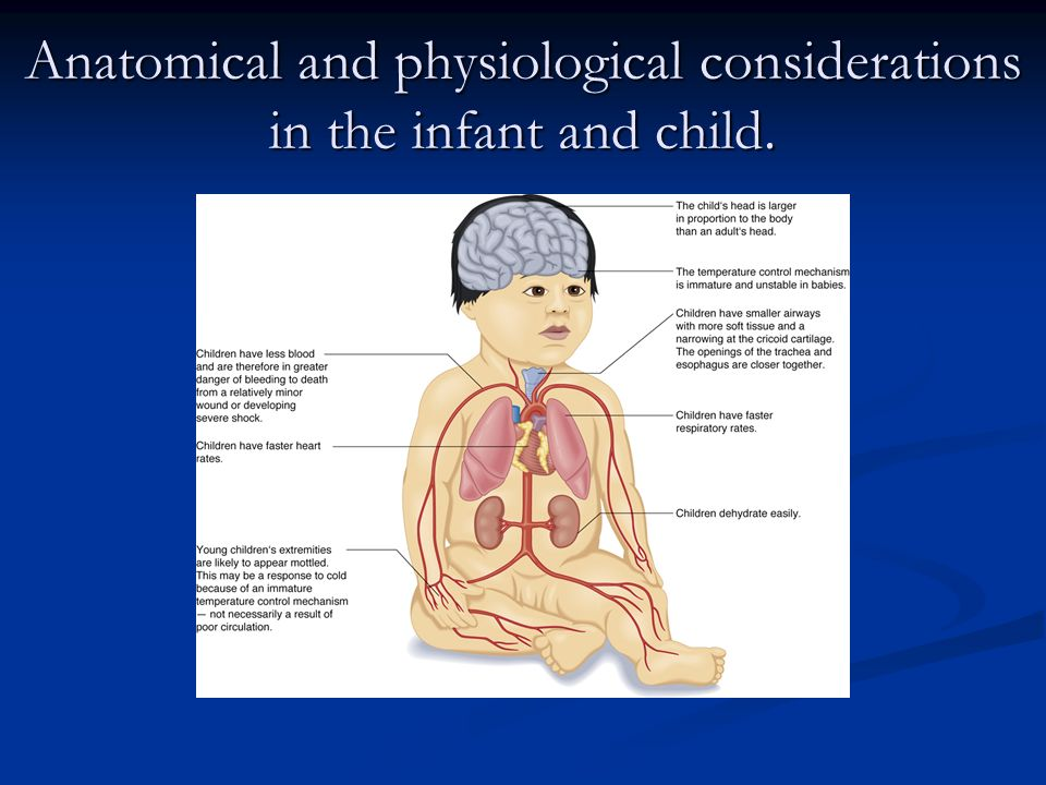 Anatomical and physiological considerations in the infant and child.