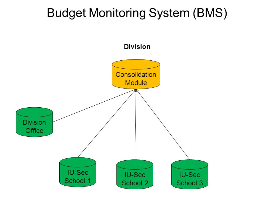 Budget Monitoring System (BMS)