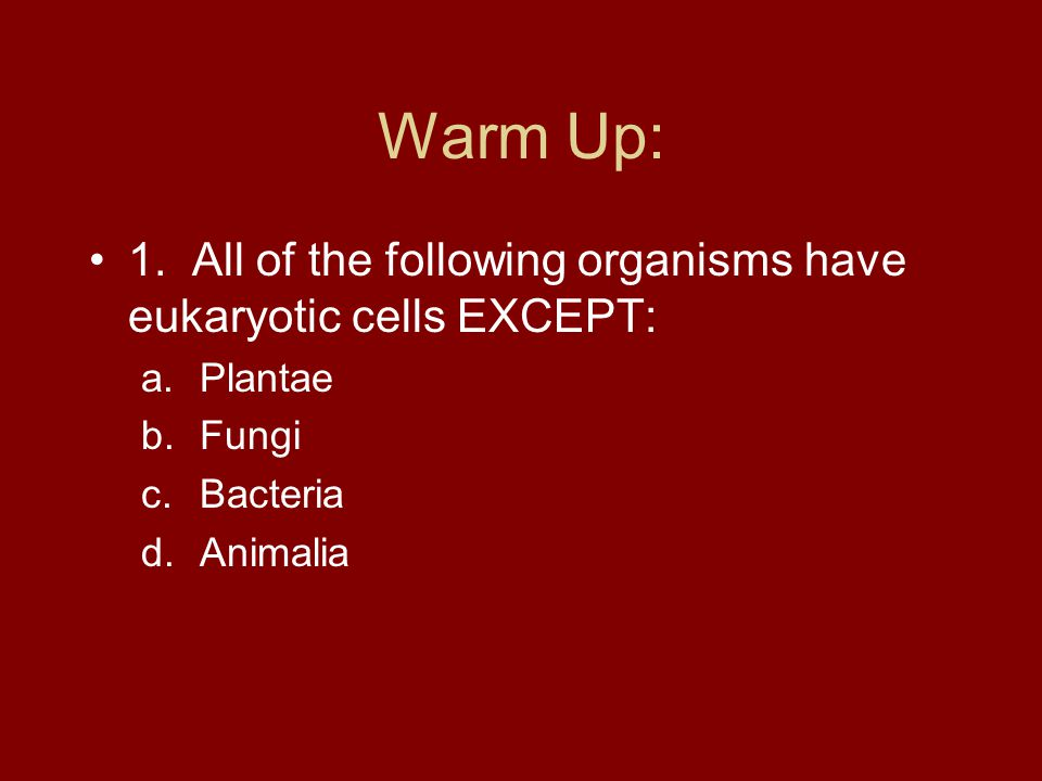 Warm Up: 1. All of the following organisms have eukaryotic cells EXCEPT: Plantae. Fungi. Bacteria.