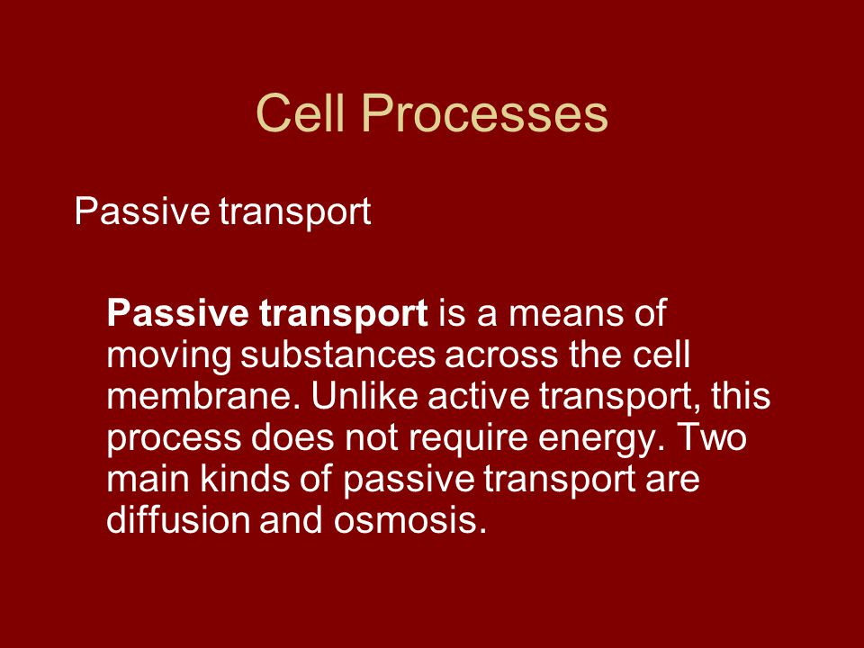 Cell Processes Passive transport