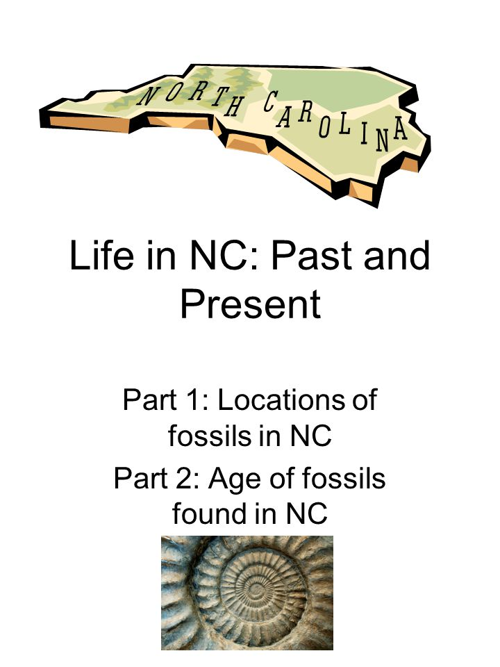 Life in NC: Past and Present