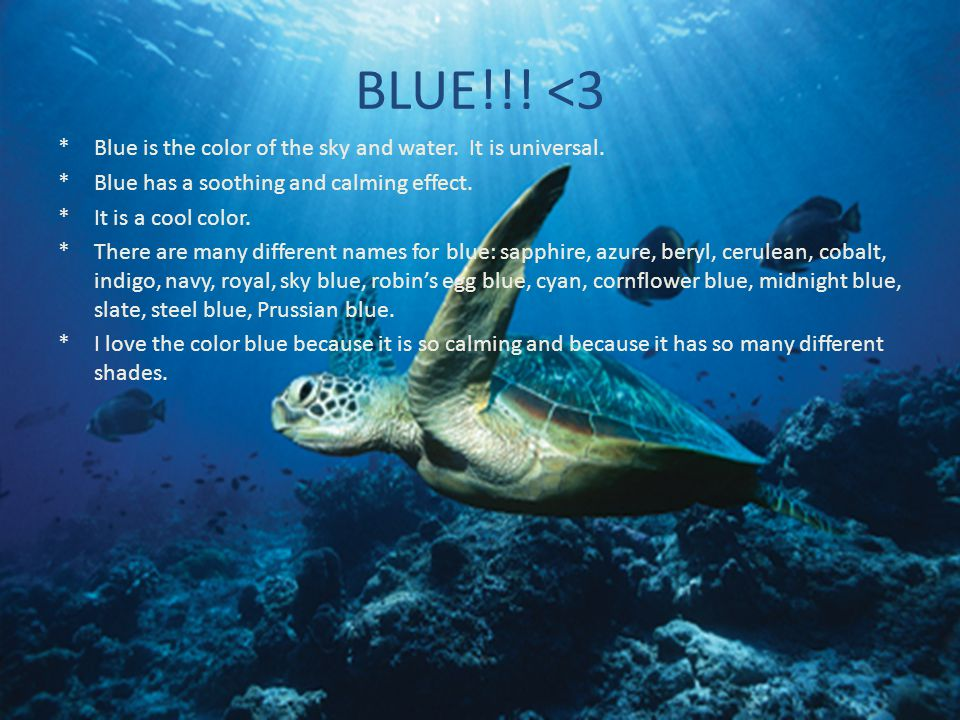 BLUE!!! <3 Blue is the color of the sky and water. It is universal.