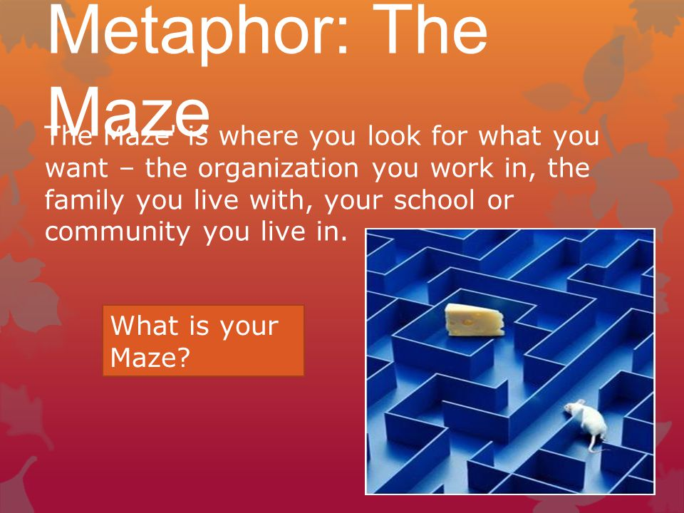 Metaphor: The Maze