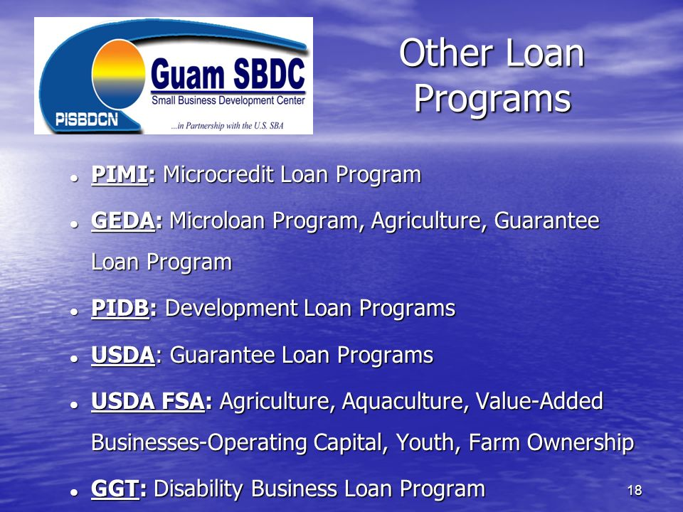 Other Loan Programs PIMI: Microcredit Loan Program