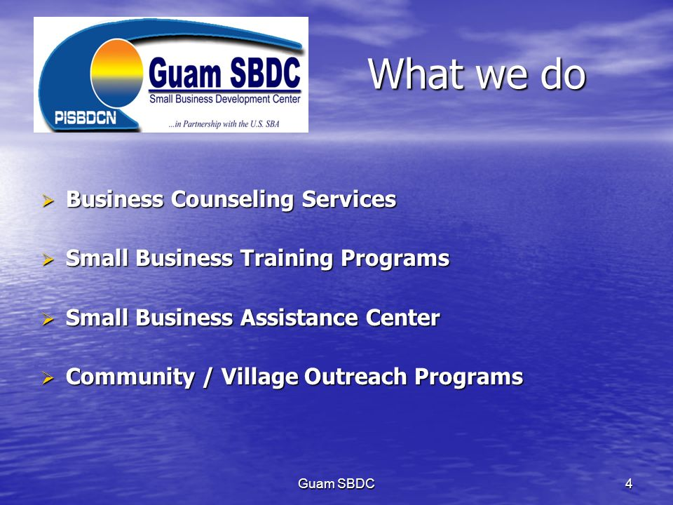 What we do Business Counseling Services