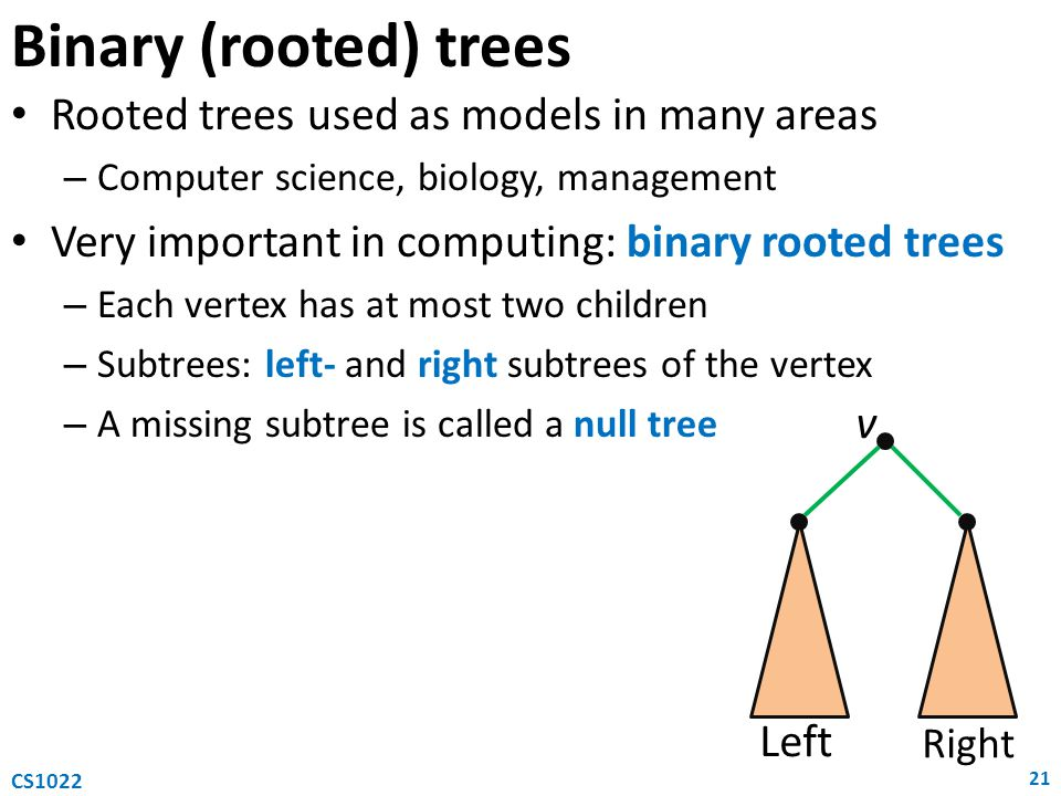 Binary (rooted) trees Rooted trees used as models in many areas